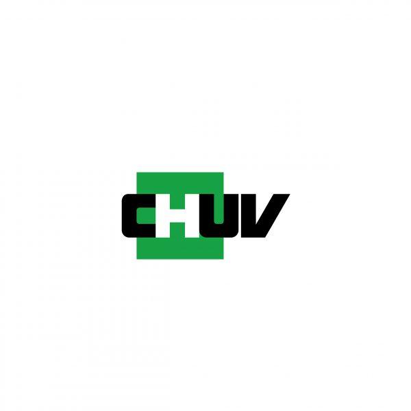 Signalétique du CHUV, dossier d'analyse